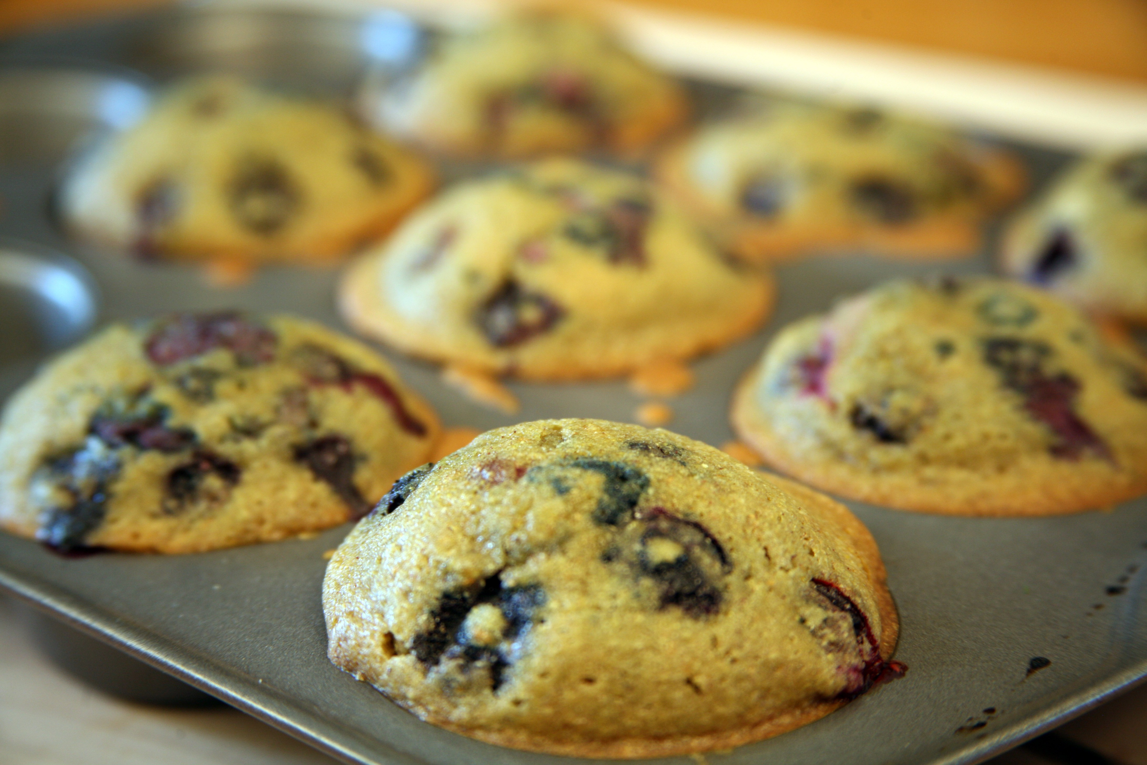 Gluten-Free Blueberry Corn Muffins Recipe — Dishmaps