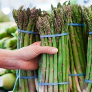A Famed Asparagus (Hadley Grass)