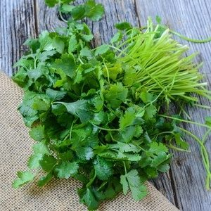 Cilantro & Coriander: Eat Well and Live Forever