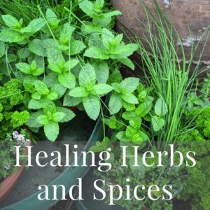 Mediterranean Diet Recipes Healing Herbs and Spices