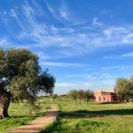 Agrotourism in Peloponnese Greece - Eumelia
