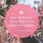 5 Secrets to Jump Start your Summer Garden